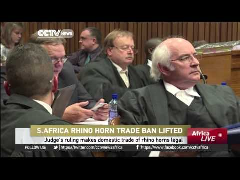 South Africa: Judge's ruling makes domestic trade of rhino horns legal