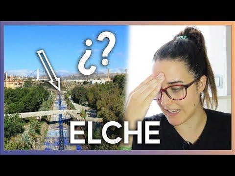 ¿Qué Hay Al Final Del Río Vinalopó En ELCHE? | VOLUNTARIADO Por El MEDIO AMBIENTE