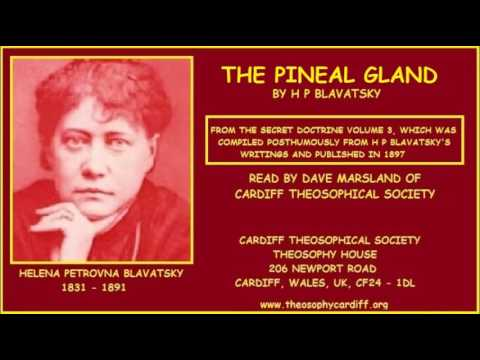 Theosophy:- The Pineal Gland by H P Blavatsky