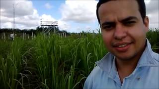 Sondas de TDR (Time Domain Reflectometry) Equipe do LARAS - UFAL