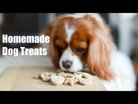 homemade-dog-cookies-(peanut-butter-banana)- -easy-diy-recipe-for-treats