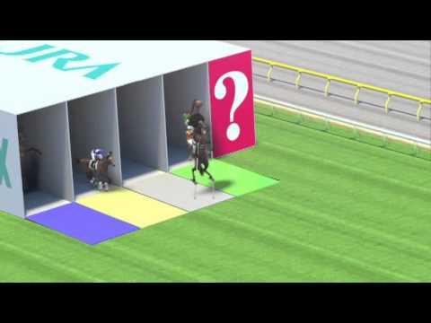 JAPAN WORLD CUP 3 サラ系 箱障害直線 アフロマニア