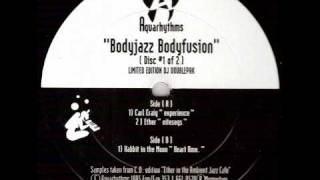 Aquarhythms - Bodyjazz Bodyfusion (Rabbit In The Moon Heart Rmx)