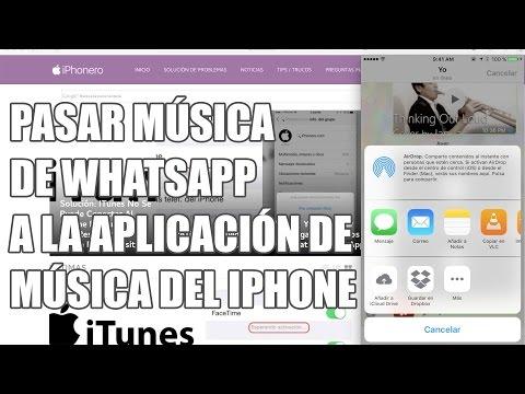 Pasar canciones de WhatsApp a la app de música