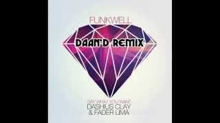 Funkwell feat Dashius Clay & Fader Lima Say -  What You Want (Daan