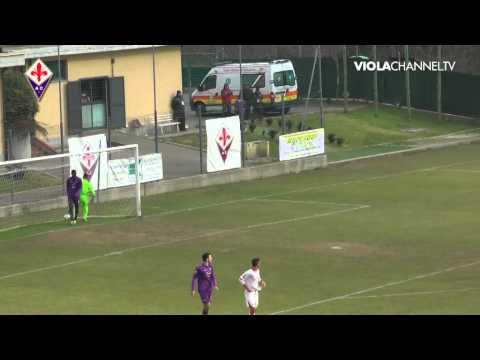 14-12-13 Fiorentina Bari Primavera.mp4