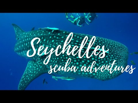 Diving the Seychelles