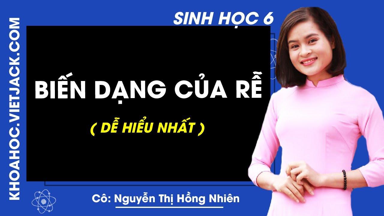 Sinh học 6 – Bài 12 – Biến dạng của rễ – Cô Nguyễn Thị Hồng Nhiên (DỄ HIỂU NHẤT)