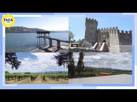 【美國灣區去哪玩? 🚗】三天兩夜大自然放鬆之旅、加州內面積最大的天然湖泊Clear Lake、Napa必去超美城堡酒莊、可愛史奴比博物館不能錯過!