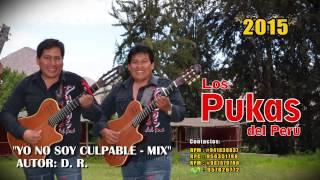 LOS PUKAS 2015 - YO NO SOY CULPABLE - 8