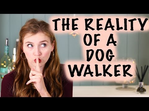 The Truth Behind Being A Dog Walker