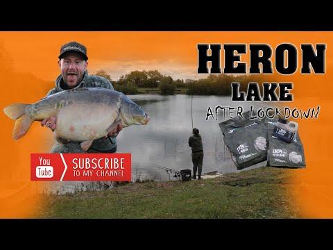 Passion For Big Carp Heron Lake Spring #1