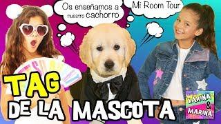 🐶 ¡TAG DE LA MASCOTA! 💕 Os enseñamos NUESTRO CACHORRO y su HABITACIÓN 🏠ROOM TOUR de nuestro perro