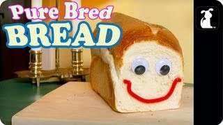 Pure Bred Bread - The Most Versatile Pet In The World!
