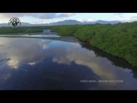 A Tribute to Mr  Winston Nanan, Caroni Swamp Trinidad