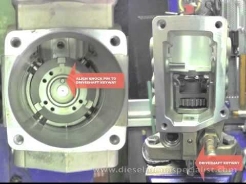 VE Pump Assembly   YouTube VE Pump Assembly