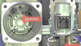 VE Pump Assembly
