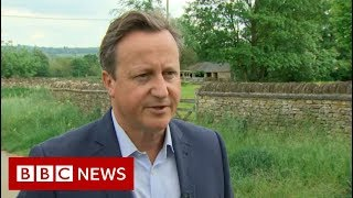 David Cameron: 'I feel desperately sorry for Theresa' - BBC News