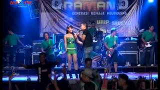 Video Kumpulan Musik Video Dangdut Tresno Waranggono   Voc  Mimin wes Gak Pesek ABG HOT download MP3, 3GP, MP4, WEBM, AVI, FLV Maret 2018