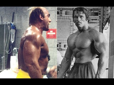 Did Hulk Hogan Really Have Bigger Arms Than Arnold Schwarzenegger?