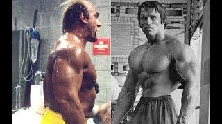 Did Hulk Hogan really have bigger arms than Arnold Schwarzenegger?