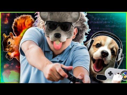 GENIO QUIZ ANIMAIS E GAMES COM O TAMTAM 🦊