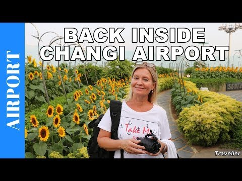 Inside Singapore Changi Airport 2 | World´s Best Airport | Our Favorite Airport - Airport Vlog