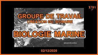 Groupe de travail : Biologie Marine