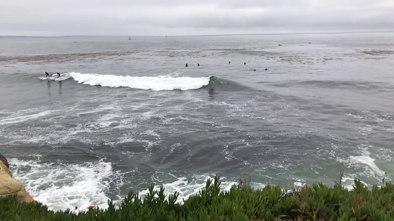 Surfers At Cowell S Beach In Santa Cruz