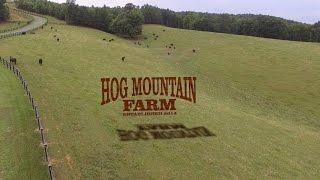 Hog Mountain Farm - Cattle Farm in North Carolina