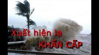 Tin bão khẩn cấp: Bão số 4 đã ập vào Thái Bình