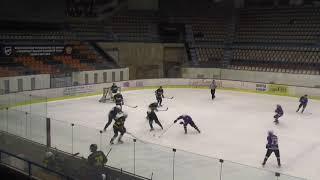 Хоккей ЛНХЛ Заводы-Айсберг 06.02.2018 г. 1 пер. Пермь