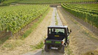 Gator XUV865M - Testimonio de Markus Schneider sobre los viñedos | John Deere ES