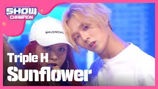 Video Show Champion EP.228 Triple H - Sunflower download MP3, 3GP, MP4, WEBM, AVI, FLV Maret 2018