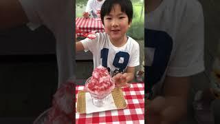 日光天然かき氷 を、チロリン村で食べるたいようくん。6歳の食レポです.