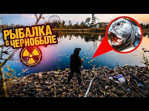 Рыбалка в Припяти / Ковш смерти / Готовая Квартира в Чернобыле