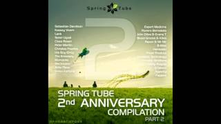 DJ Slang   Spring Tube 2nd Anniversary Compilation  Part 2 Continuous DJ Mix