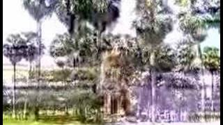 Phum Pon Khmer School: A 1,600 years in a waiting