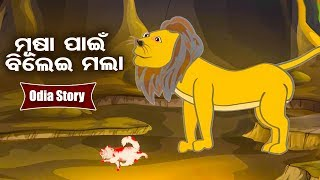 Musa Paen Bilei Mala ମୂଷା ପାଇଁ ବିଲେଇ ମଲା Odia Moral Story For Kids   Hooke Hoo Tv