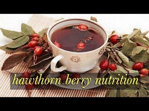 Hawthorn Berry Nutrition - Carrowcrory Journal 003