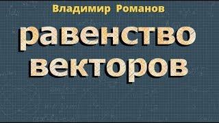 геометрия РАВЕНСТВО ВЕКТОРОВ  8 9 класс видеоурок