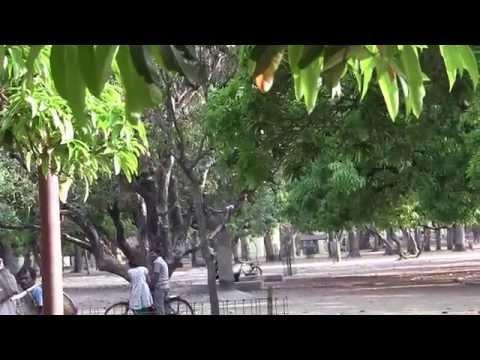 Shantiniketan - The Abode of Peace