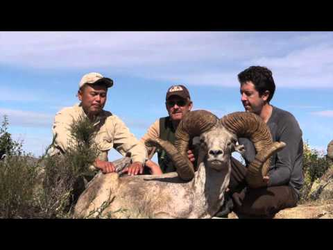 Chris Dianda In Mongolia 2015 With Tucannon Outfitters And Ramslam Video