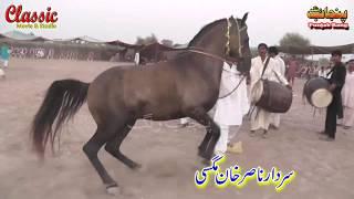 92/Best Horse Dance Punjab Meerik Sial Jhang 2018/ Bani Syed Qalandar Sultan