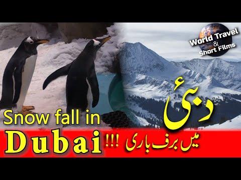 Snowfall in Dubai – Ski Dubai in Urdu & Hindi