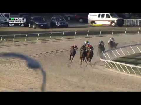 RACE REPLAY: 2017 Sam F. Davis Stakes Featuring McCraken