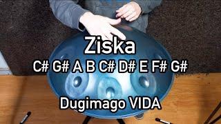 Dugimago Vida Ziska 8 + Ding scale