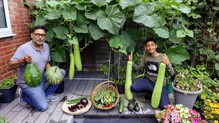Harvesting Deshi Vegetables Iฑ Uk 2021