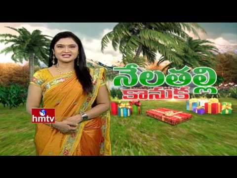 AP Govt Focus on Horticultural Crops Hub in Rayalaseema| Nela Talli | HMTV