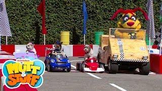 Mutt & Stuff - Race Car Dogs